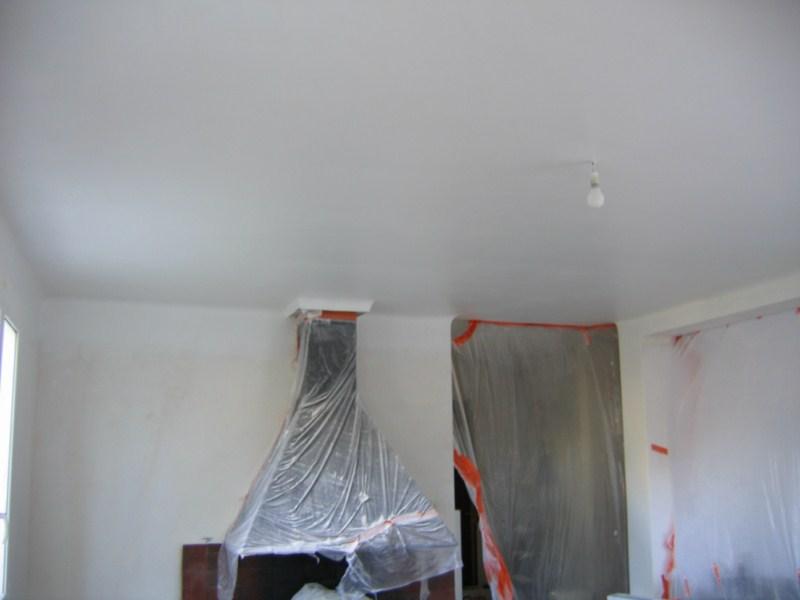 Le plafond de la salle manger une fois peint with peinture paillete blanche for Peinture a paillette blanche